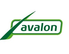 Take-over by Victoria PLC to boost international growth for artificial grass manufacturer Avalon