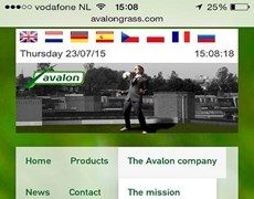 Mobile user experience Avalon website